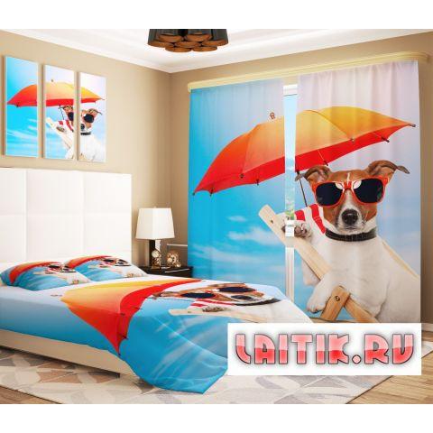 Фотошторы «Собака в отпуске»