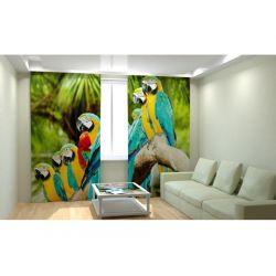 Фотошторы «Пестрые попугаи»
